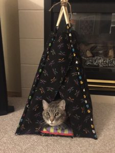 Chachi in her teepee